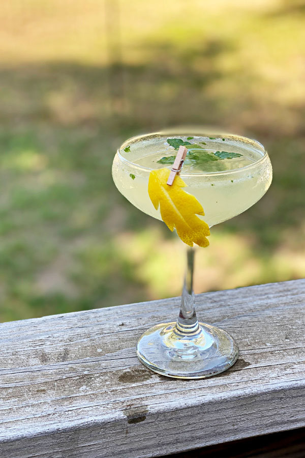 South Side Cocktail | 4 Ingredient Gin Cocktail